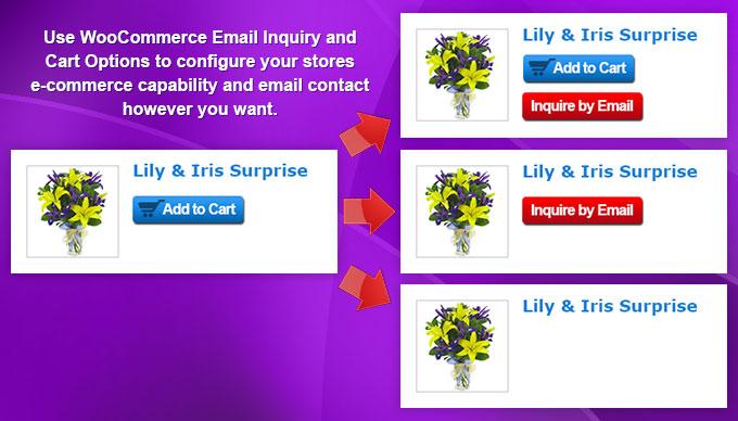 woocommerce plugin orçamento WooCommerce Email Inquiry & Cart Options